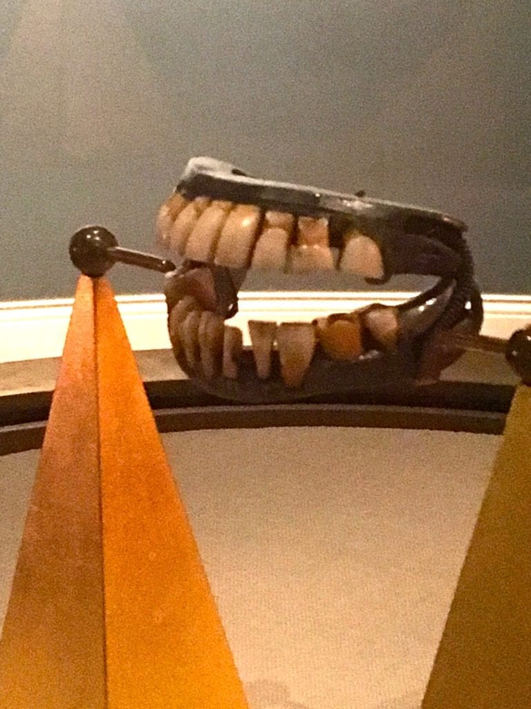 Washington's dentures are made of elephant ivory and human and cow teeth - Photo by Samantha Davis-Friedman
