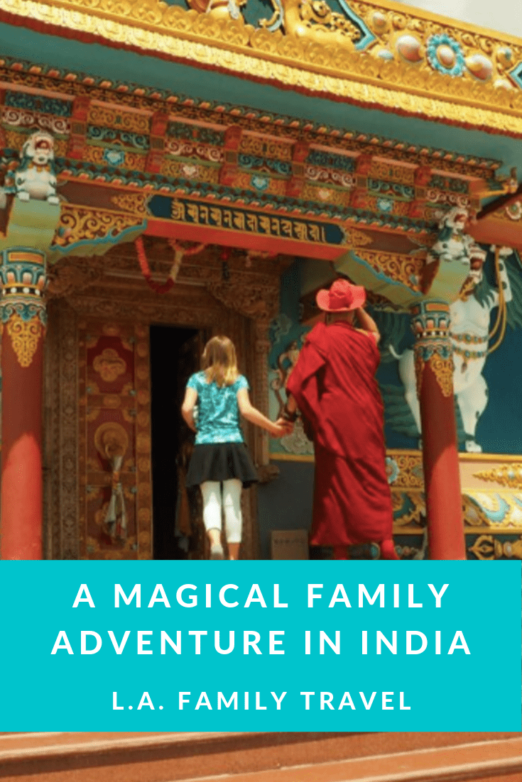 Magical Indian Family Trip Pinterest Pin
