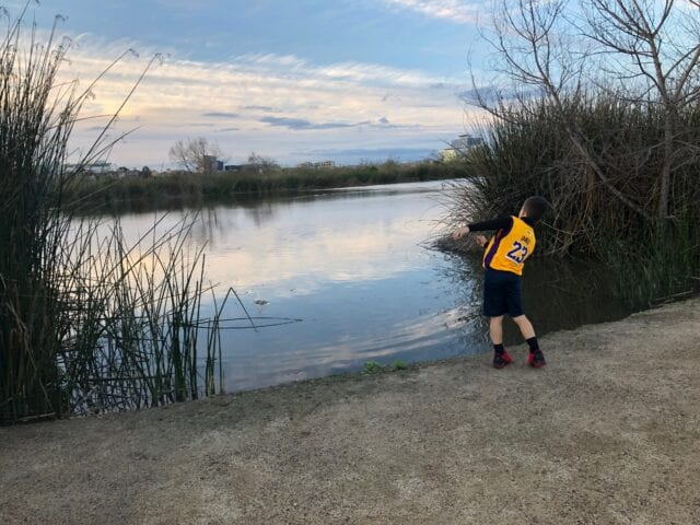 San Joaquin Marsh and Wildlife Sanctuary - best things to do in Irvine with kids