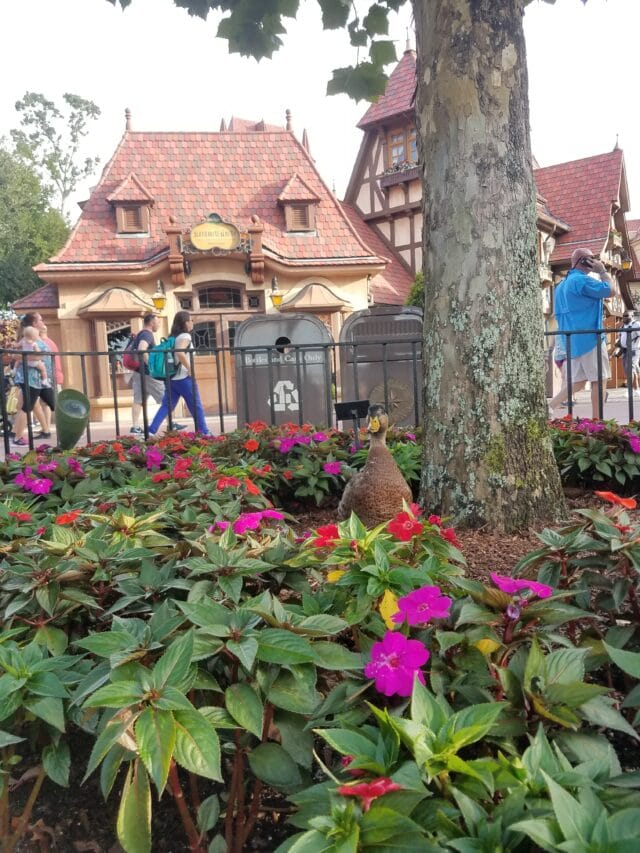 Disney World Main Street - disney for adults