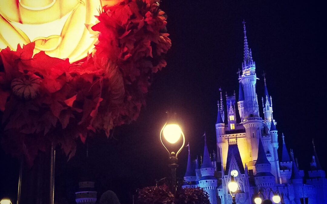 rekindle romance in Disney World