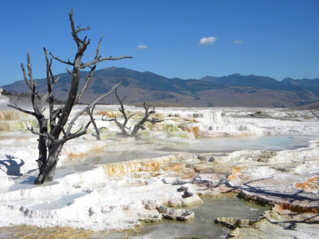 Not snow but minerals leave a unique picture on the Mammoth Terraces in Yellowstone National Park in Wyoming