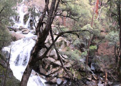 Yosemite With Kids: Nature & Pamper at Tenaya Lodge