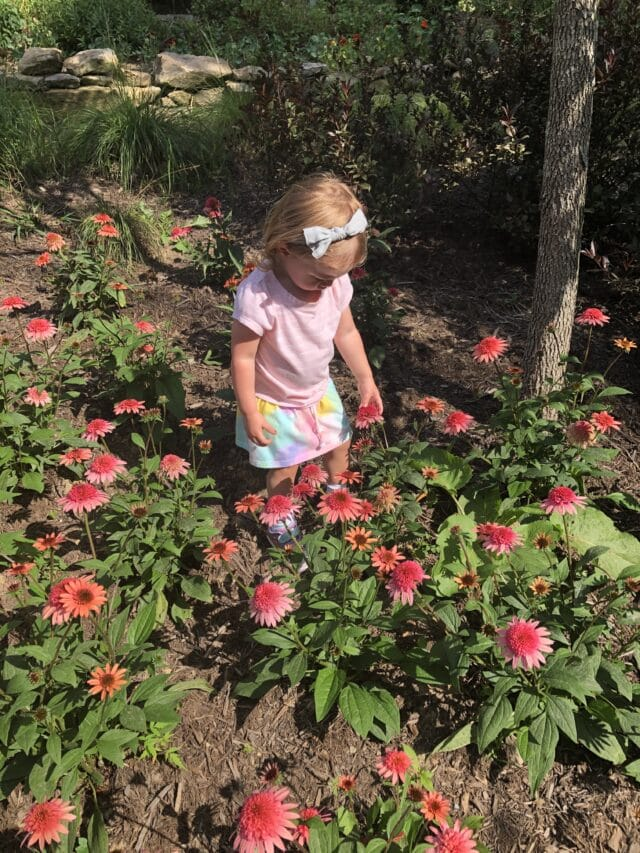 things to do with kids for the labor day weekend