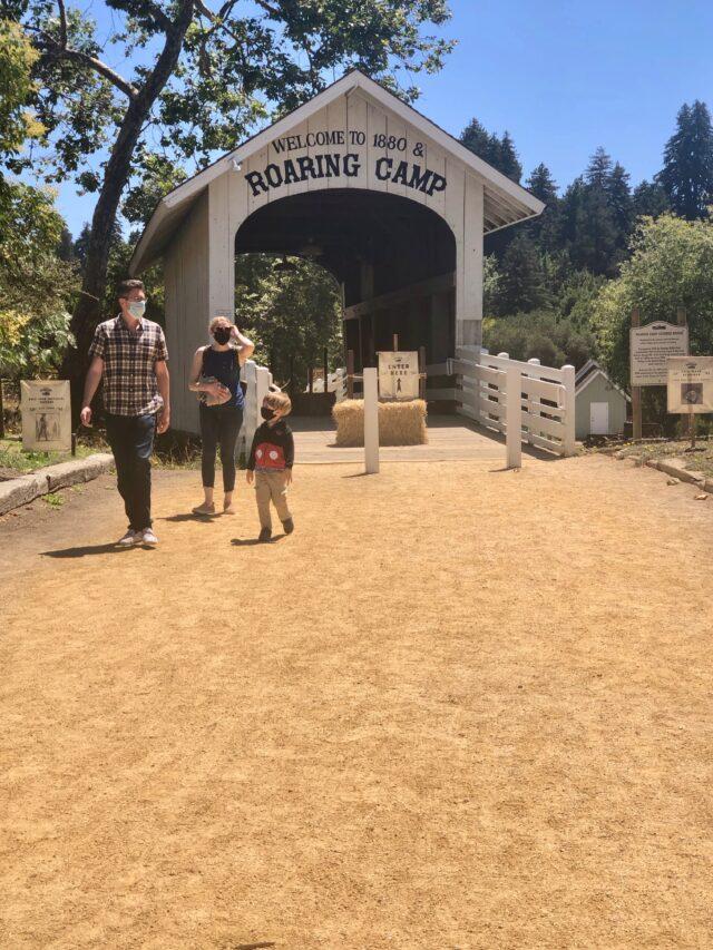 Roaring Camp & Big Tree Train