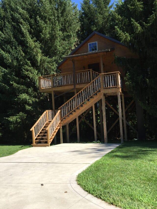 Photo of Treehouse
