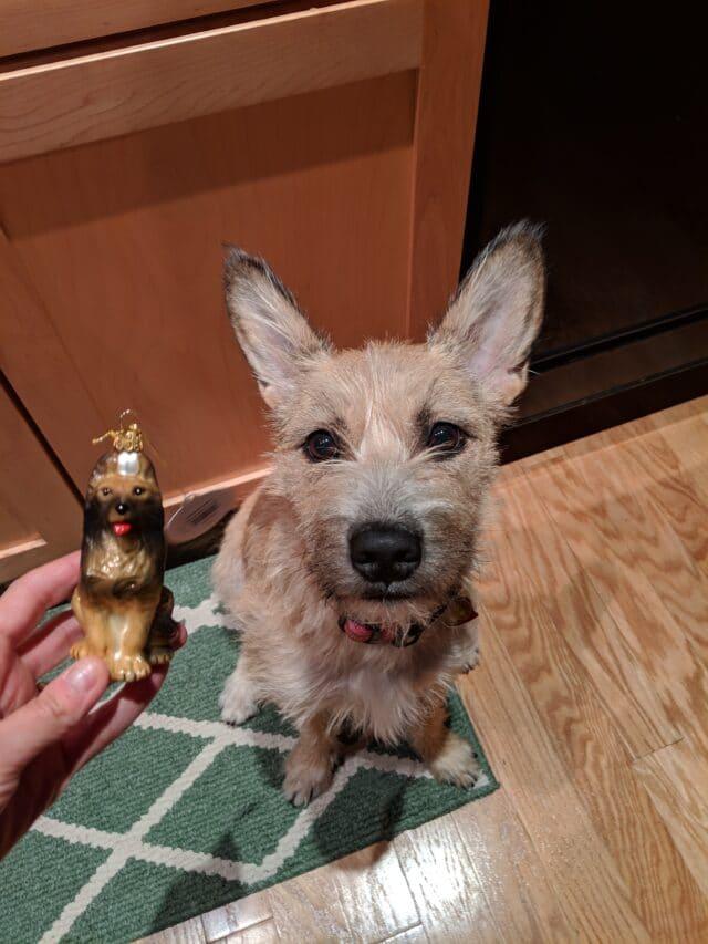 dog and dog ornament