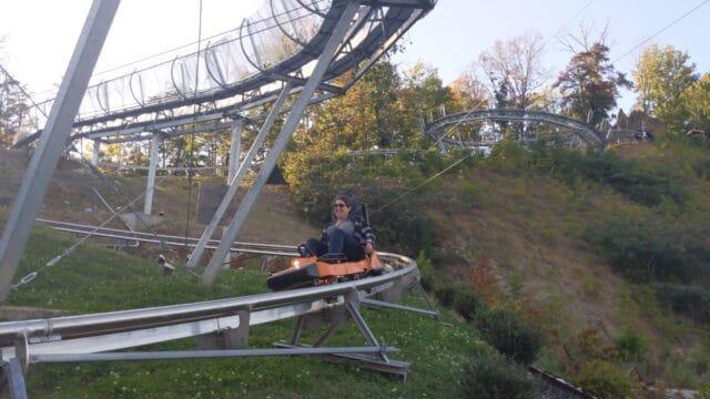 Picture of Alpine Mountain Coaster