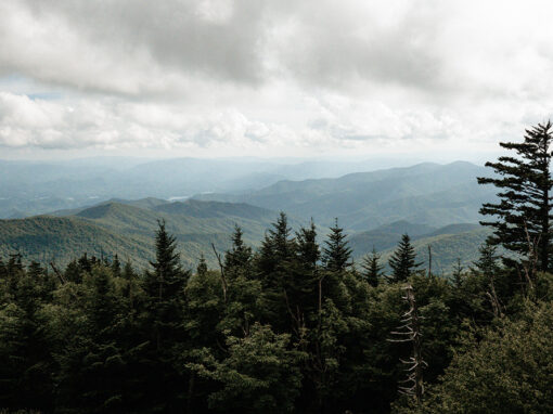 5 Best Things To Do On A Family Vacation To The Smoky Mountains