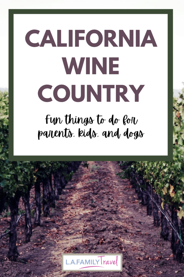 There are so many fun things to do with kids in sonoma and napa counties. California wine country has lots of activities that families can enjoy on a family trip to california wine country. Many wineries are welcoming to kids and dogs and provide fun things to do.