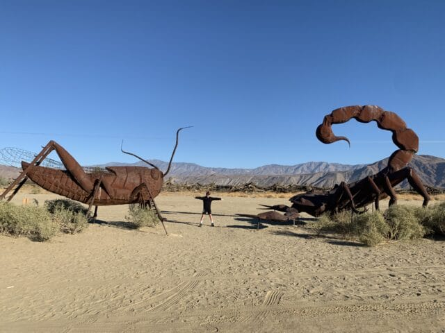 Dueling critters in Borrego Springs family fun at borrego springs, california fun things to do with kids