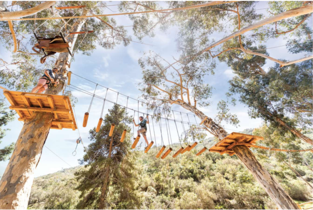 View of the aerial adventure obstacle course from below. 7 Best Things to do on Catalina Island with Kids