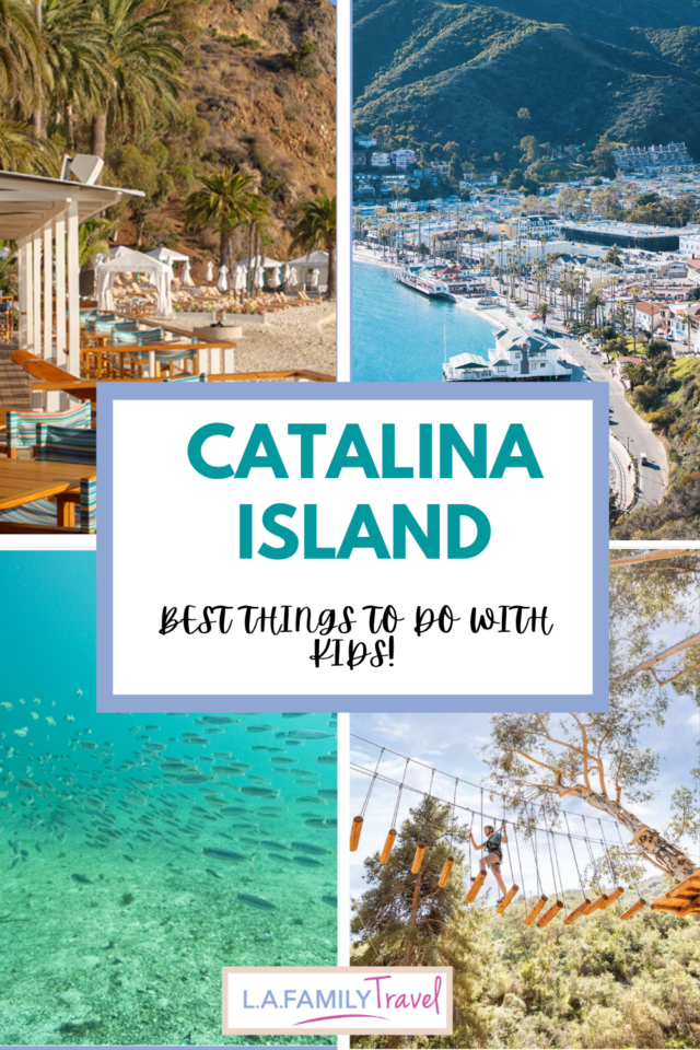 Collage of Catalina Island (clockwise from top left): Descanso Beach, aerial view of the island, Catalina Aerial Adventure, school of fish under the sea - things to do at catalina island with kids