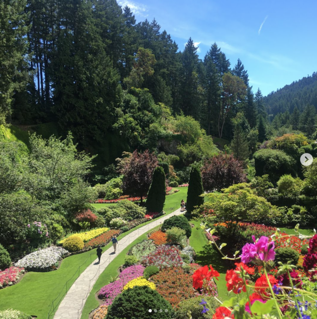 Butchart Gardens, full of colorful flowers, trees, and exotic plants. vancouver with kids how to spend the best long weekend family travel