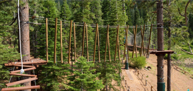 Wooden obstacle course hung above ground, between pine trees. 7 Not To Miss Things To Do In South Lake Tahoe With Kids family travel