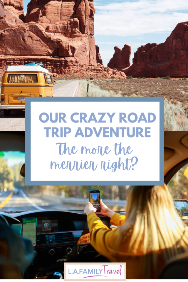 Juggling a toddler and 2 dogs for 10 hours, our road trip adventure was a more than a little crazy. The more the merrier right?