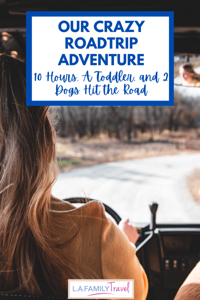 Juggling a toddler and 2 dogs for 10 hours, our road trip was a more than a little crazy. The more the merrier right?
