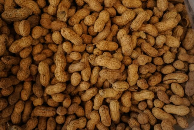 a collection of peanuts. managing food allergies while on vacation