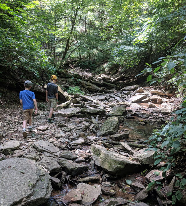 Two kids hike near the Natchez Trace. The best family activities in Franklin, Tennessee, best fall activities in Franklin.