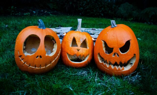Three jack-o-lanterns on grass. Fall in the San Francisco Bay Area: Best Things to Do with Kids family travel halloween